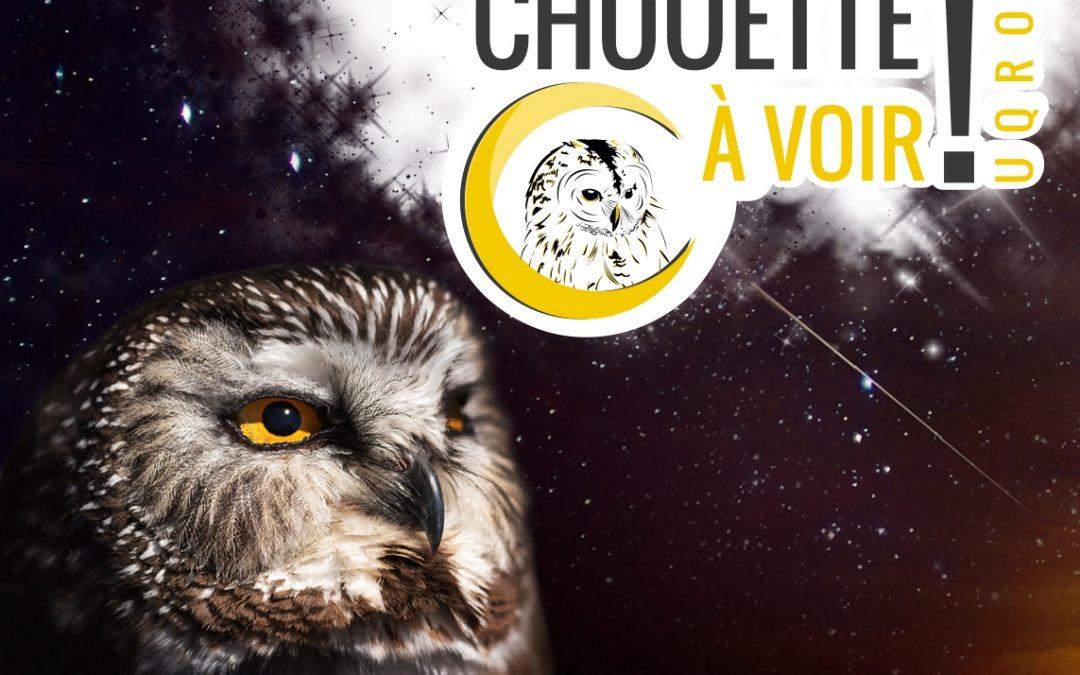 Union québécoise de réhabilitation des oiseaux de proie : Soirée perséides
