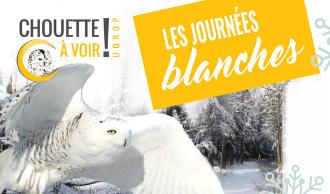 UQROP : Journées Blanches à Chouette à voir!