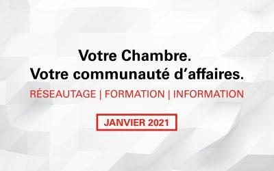 Rubrique mensuelle : Janvier 2021